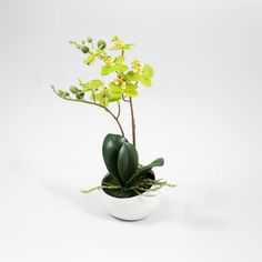 Phalaenopsis Artificial 25cm