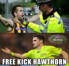 Free Kick Hawthorn Free Kick, Football Memes, Crows, Scooters, Puns, Kicks, Basketball, Australia, Baseball Cards