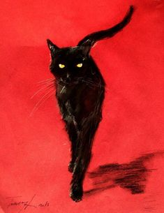 Cat on a red background | illustration