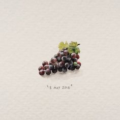 Cape Grapes