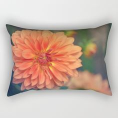 #photography #nature #flowers #floral #orange #dahlia #closeup #macro available in different #homedecor products. Check more at society6.com/julianarw #pillow