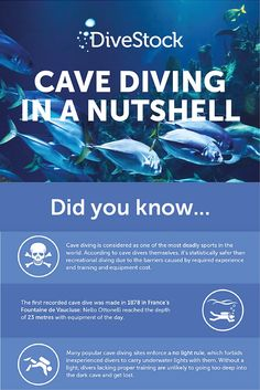 Infographic: Cave diving in a nutshell Cave Diving, In A Nutshell, World Of Sports, Infographic, Blog, Infographics, Blogging, Information Design, Visual Schedules