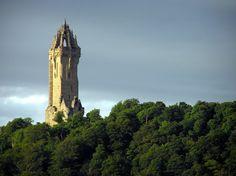 Fehér rózsa őrzi William Wallace, a rettenthetetlen sírját