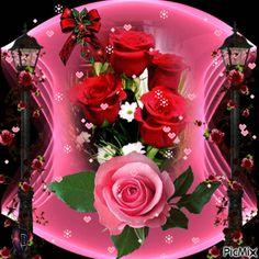 Happy Rose Day Wallpaper, Flower Wallpaper, Beautiful Flowers Wallpapers, Beautiful Gif, Beau Gif, Kristen Stewart Pictures, Love Heart Gif, Flowers Gif, 3d Girl