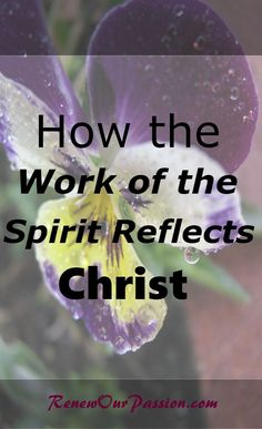 When you\'ve been born of the Spirit, at first, you can be a little rough around the edges. Like a messy bedroom or bad pedicure or disorganized closet. Some things still need to be overhauled or fixed up to reflect Christ through the Spirit. #holyspirit, #christ, #sanctification, #grace