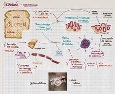 La Chuleta de Osler: Gastroenterología - Celiaquía, anticuerpos y su fisiopatogenia