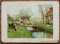 Schoolplatenschilder Koekkoek was natuurminnende illustrator Vintage Images, Vintage Posters, Vintage School, Dutch Artists, The Old Days, Art For Art Sake, Country Life, Cute Drawings, Holland