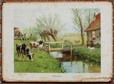 """Overzicht van Cornelis Jetses klassikale oude schoolborden DEze had de tite. """"Herkauwers""""."""