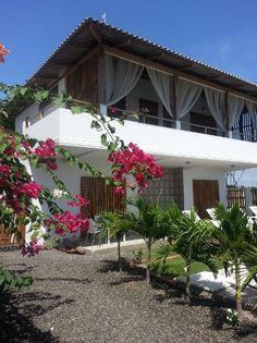 WF Casa from Beachfront Bargains. B&b in Ecuador