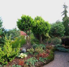 Hageliv og hagedesign
