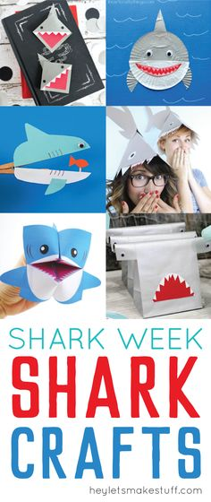 Love sharks? Can't g