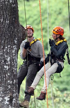 High life: The couple were today hoisted up a 130ft tree in the rainforest in Sabah, Borneo