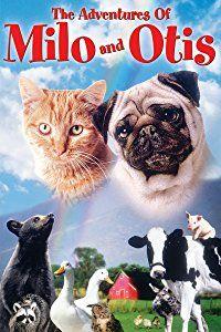Amazon.com: The Adventures Of Milo And Otis: Dudley Moore, Milo, Otis, Masonori Hata: Amazon Digital Services LLC