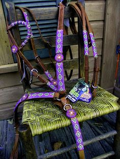 Custom Beaded Purple Horse Tack