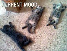 Laziness overload!