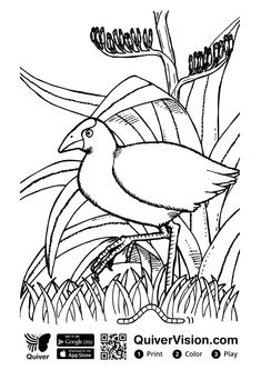 7 Best Nn Images Coloring Book Coloring Books Coloring Pages