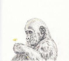 Baby animal print for nursery  Gorilla digital download