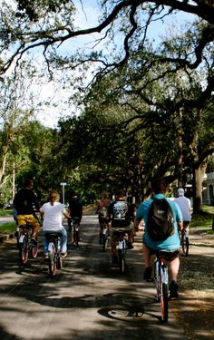 A Group Enjoying the Scenery of New Orleans on Bikes.