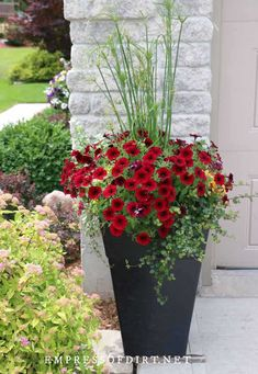 Give the front of your house a boost with these planter ideas. With photos from home gardens, there are lots of inexpensive ways to add colorful container plants including window boxes. Plants For Planters, Outdoor Flower Planters, Outdoor Flowers, Garden Planters, Plants For Porch, Ideas For Planters, Potted Plants, Planters For Front Porch, Flower Pots