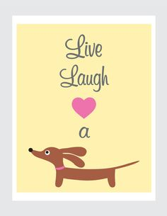 live. laugh. <3 a doxie.