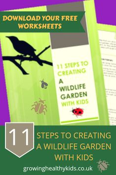 BUG SAFARI minibeast insect  observation nature kit NICK BAKER My Living World