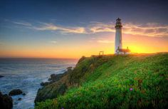 36 Best Pigeon Point Light house images in 2014   Point