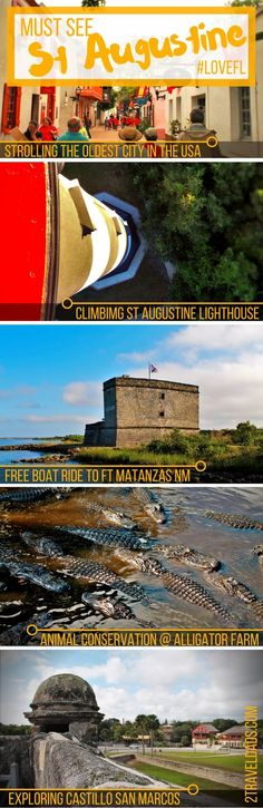 The USA's oldest city, St Augustine, Florida is perfect for a family trip with nature, history, nautical charm and pirates. #LoveFL 2traveldads.com