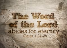 """I PETER 1:24-25  ~  """"All men are like grass, and all their glory is like the flowers of the field; the grass withers and the flowers fall, but the word of the Lord stands forever."""" / BIBLE IN MY LANGUAGE"""