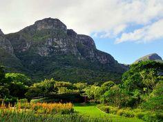 Kirstenbosch National Botanical Garden, Cape Town - Corbin17/Alamy