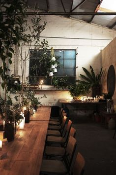 Beautiful rustic space with natural tones, natural light, candles, and loads of greenery!