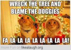 Wreck the tree and blame the doggies, fa la la la la la la la la