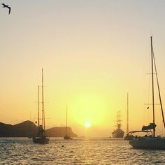 Sunset over Admiral Bay Bequia #stvincentandthegrenadines #sailing #sailboat #errantseagull by dickmarkgraf