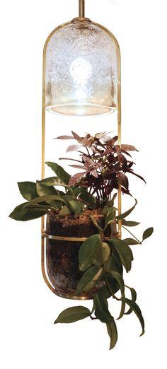 hanging growlight
