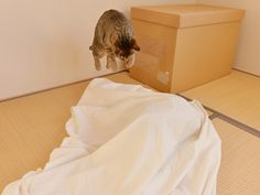Hana attacking Maru (who is playing under the sheet)