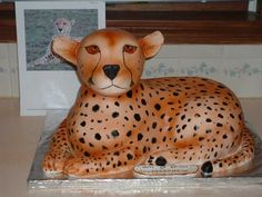 Cheetah By Kitagrl on CakeCentral.com