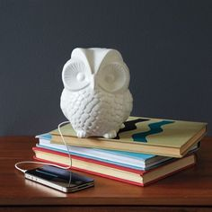 So cool! A Ceramic Owl Speaker!!