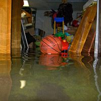 How to Fix and Repair Water Damage in the Basement Water damaged basements can be especially difficult to deal with. A basement flood damage can result from