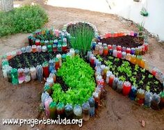 Garden flower-shaped using plastic bottles PEDAGOGIA BRASIL www.pragentemiuda.org