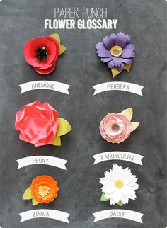 six paper flower tutorials