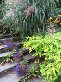 garden steps at Rydal Mount
