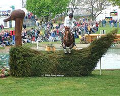 Rolex - one of the obsticles - Three Day Eventing horse & Rider. Note the logs in the back ground... the horse made a turn on the grass, jumped the logs into the water obsticle, and from the water is jumping the juniper covered wooden duck. It takes  Comfort is in a great  event horse. Find  all things eventing: http://www.galloperz.com/store