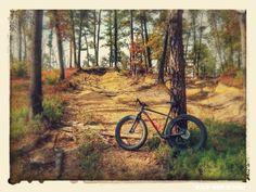 Foto Gordo – The Pine Barrens of New Jersey Fat Bike, New Jersey, All Terrain Bike