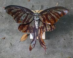 Luna Moth: scrap metal sculpture.
