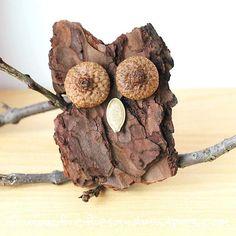 Eule aus Baumrinde mit Eichelkappen als Augen Mehr
