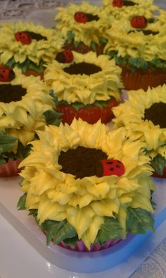 Sunflower Cupcakes - Sunflower cupcakes made with buttercream frosting and oreos with fondant lady bugs
