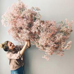 Arte Floral, Deco Floral, Floral Wedding, Wedding Bouquets, Wedding Flowers, Flower Installation, Dried Flower Arrangements, Ikebana Arrangements, Gypsophila
