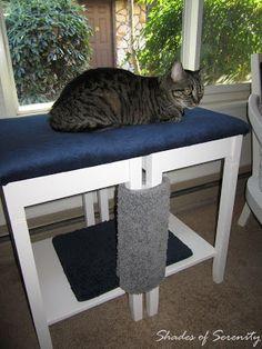 Shades of Serenity: Homemade Cat Napper