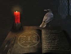 black magic specialist in london you can ask for removal of black magic by black magic specialist baba ji in london Vlog Tips, Look At The Book, Book Of Life, Black Magic, Book Review, Witchcraft, Mystic, Told You So, Books