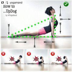 """3,101 Likes, 31 Comments - Yoga Asanas ॐ Learn & Improve (@yogaalignment) on Instagram: """" #UrdhvaMukhaSvanasana ↔ #UpwardFacingDog Pose on @yogaalignment . . #healthypractice with…"""" #MorningYoga"""
