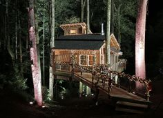 Treehouse Masters/Animal Planet